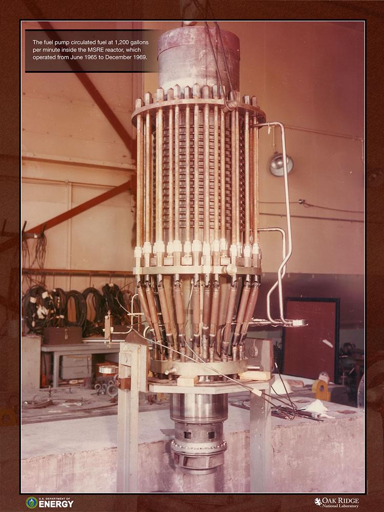 MSRE Fuel Pump Motor