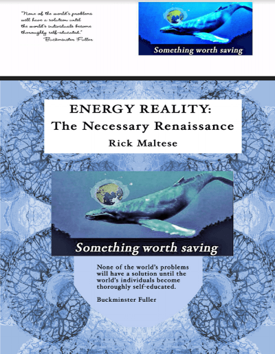 Energy Reality Book Rick Maltese