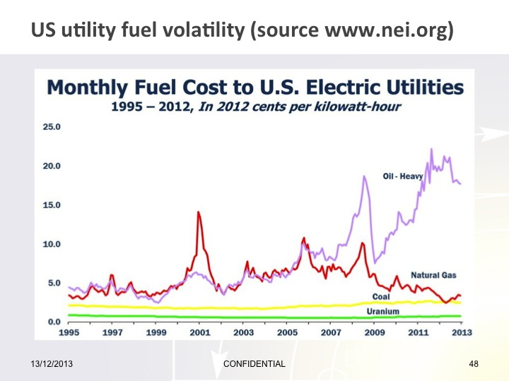 Fuel Type Costs