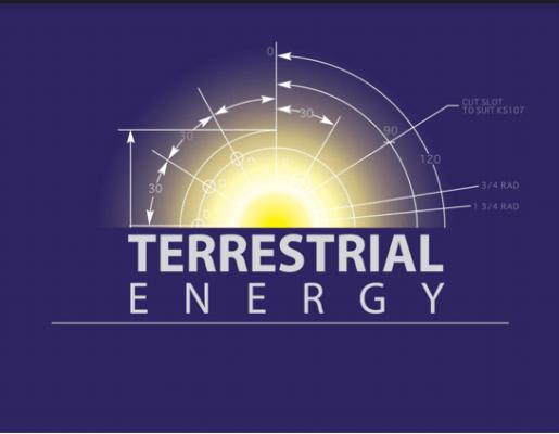 Terrestrial Energy Inc LeBlanc TEAC5