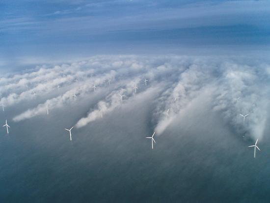 Wind Wakes