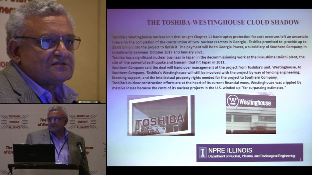 Restoring Relevance to Nuclear Energy – Future Innovation Strategies – Magdi Ragheb @ TEAC 8